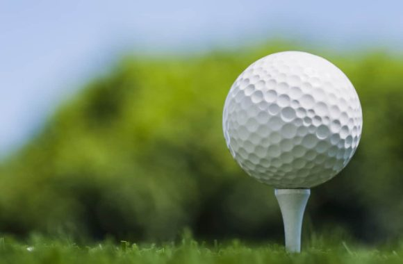 low angle of a golf ball on wooden tee